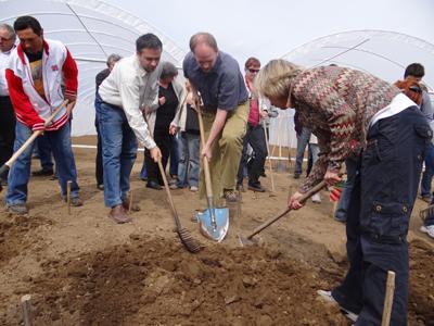 földrajzosok ültetnek a biogazdaságban: Varga Ágnes, Jeney László és Molnár Balázs (jobbról balra)